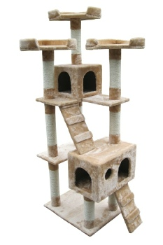 cat-tree-picture